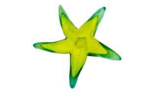 Starfish - Hudson Glass